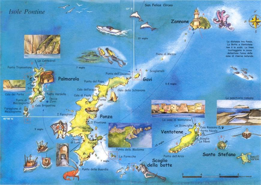 Risultati immagini per isola di palmarola